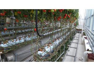 Подготовка воды для теплиц и сельского хозяйства